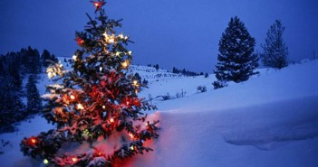 Decorated-Christmas-tree-in-snow